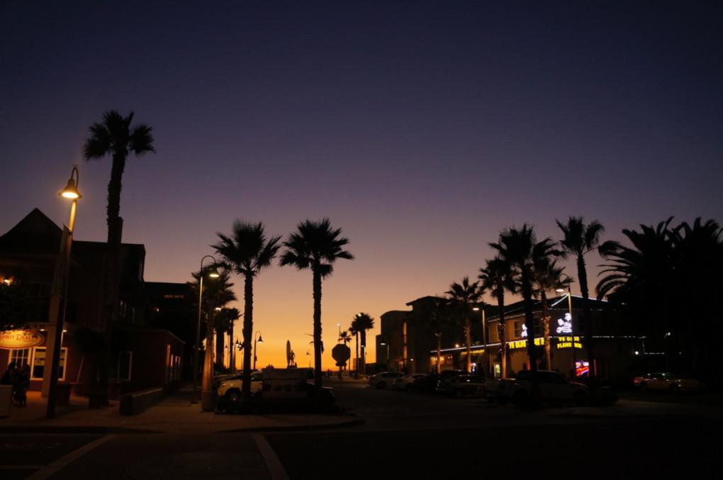 San-Diego-Kalifornia-USA-palmy